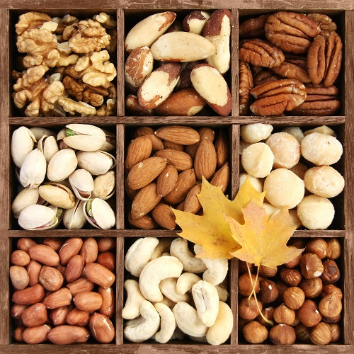 Dry Fruits – Jatalia Global Ventures Limited